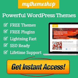 Best wordpress themes at tips for blogger